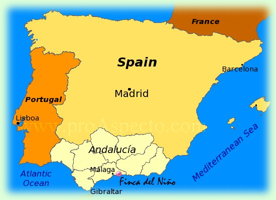Map of Province of Malaga for Holidays on the Coast side Costa del Sol