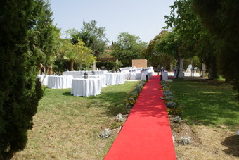 The red carpet waiting for the marriage guests to come
